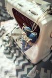 Lieu de travail de Taylor avec le machinne de couture Photo stock