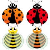 Lieveheersbeestje en bij Stock Foto's