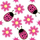 Lieveheersbeestje en roze madeliefje Stock Foto's