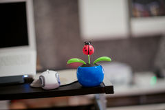 Lieveheersbeestje face to face met PC Royalty-vrije Stock Afbeeldingen