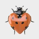 Lieveheersbeestje - Hart gevormd Lieveheersbeestje Stock Afbeelding