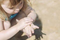 Lieveheersbeestje in jonge geitjeshanden klein het onzelieveheersbeestjeinsect van de kindholding op zonnige de zomerdag de kleut Royalty-vrije Stock Foto