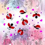 Lieveheersbeestje met harten en bloemenpatroon Stock Fotografie