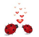 Lieveheersbeestje met harten, valentijnskaartenachtergrond. Stock Afbeelding