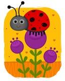 Lieveheersbeestje op bloem stock illustratie