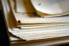 Lieveheersbeestje op krant royalty-vrije stock afbeelding