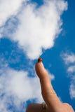 Lieveheersbeestje op vinger royalty-vrije stock foto's