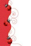 Lieveheersbeestjes Stock Foto
