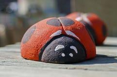 Lieveheersbeestjes van steen op een zonnige dag stock foto's