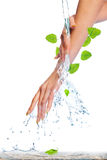 Life. Beautiful female hands with water stream and  leafs Royalty Free Stock Photos