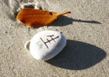 Life. Engraved stone on beach with leaf Stock Images