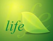 Life. Ileaf illustration on green background Royalty Free Illustration