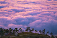 Life above the clouds Royalty Free Stock Photo