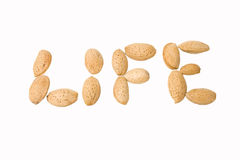 Life from almond seeds. Life written with almond seeds Royalty Free Stock Images