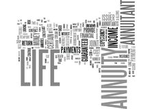 Life Annuity Yes Or No Text Background  Word Cloud Concept Royalty Free Stock Image