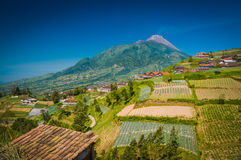 Life around Mount Merbabu. Photo of Mount Merbabu and surrounding fields with houses in village near Yogya in central Java province in Indonesia Stock Photo
