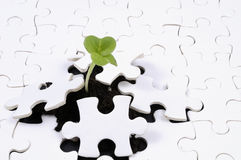 Free Life As A Puzzle Stock Image - 9289081