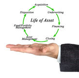 Life of Asset Royalty Free Stock Photo