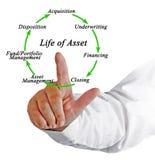 Life of Asset Stock Photo