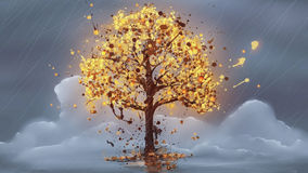 Splash tree light. Drawing trees Autumn time with rain and flying leaves,splash Stock Photo