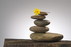Life in balance. Balancing river rocks with daisy on top Royalty Free Stock Photo