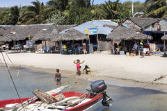 life on the beaches of the Indian Ocean north of Madagascar Royalty Free Stock Photography