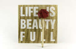 Life is beautifull. Wooden board with message and paper rose Stock Photo