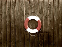 Life belt (32). Life belt on a wooden wall royalty free stock photography