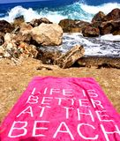 Life is better at the beach. Strong waves and enjoying the sea. Beauty of nature Stock Images