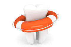 Life Buoy and tooth Stock Images