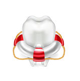 Life buoy and tooth on white vector illustration
