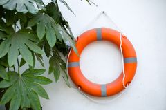 Life buoy on the wall. Life buoy leaf on the walln Royalty Free Stock Photography