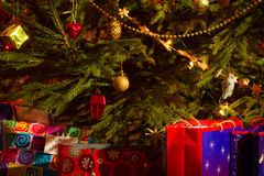 Life christmas tree with presents royalty free stock image
