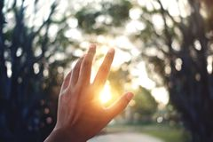 Free Life Concept. Human`s Hand Raising Into The Sky While Sunset. Blurred Tree As Background. Start Or End Of The Day Royalty Free Stock Photography - 145365207