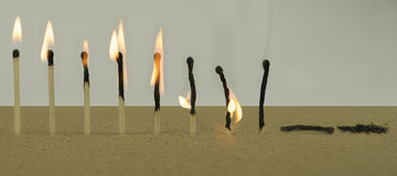 Life Cycle Concept With Matchsticks Royalty Free Stock Images