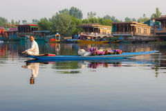 Life in Dal lake, Srinagar Stock Photography