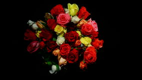 Life and Death of Colorful Bouquet Roses stock footage