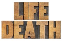Life and death in wood type. Life and death  isolated words in vintage letterpress wood type Royalty Free Stock Image