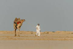 Life in desert. A iconic photo of Kutch desert, India Royalty Free Stock Images