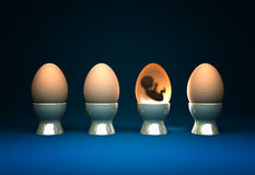 Life in egg Royalty Free Stock Photo