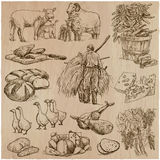 Life on the farm. Farming. Hand drawn vector pack. royalty free illustration