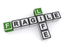 Life is fragile. Text 'fragile (and) life' in uppercase letters inscribed on small cubes and arranged crossword style with common letter 'i', white background royalty free illustration