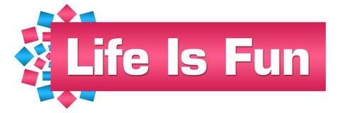 Life Is Fun Blue Pink Circular Bar Stock Photos