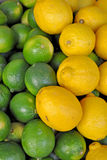 When life gives your Lemons - Limes/Lemons. Full frame close-up of limes and lemons, contrast between green and yellow Stock Photography