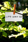 Life Goes On. Inspirational message written on a white card hanging on a green leafy branch by a wooden clothes peg Stock Images