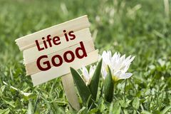 Life is good. On wooden sign in garden with spring flower Stock Photos