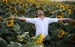 Life is great!. Happy young man posing with sunflowers in background royalty free stock photography