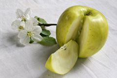 Life of green apple Royalty Free Stock Photography