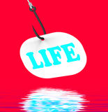 Life On Hook Displays Happy Lifestyle Or Prosperity Royalty Free Stock Photography