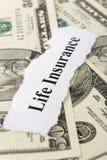 Life Insurance Royalty Free Stock Image